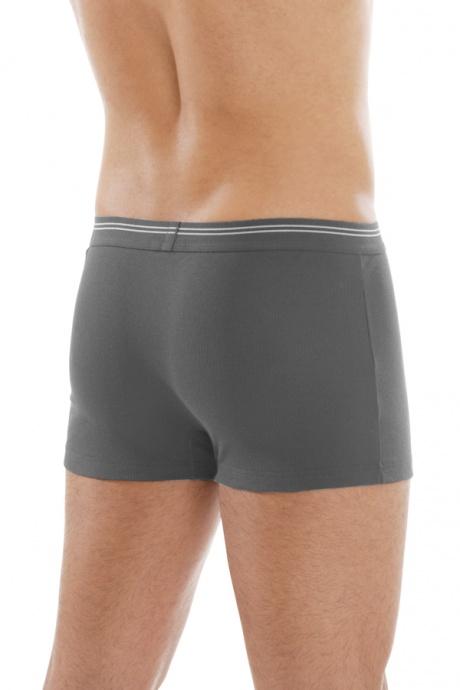 Comazo Biowäsche, Pants in anthrazit - Rückansicht