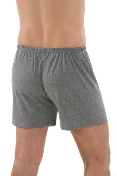 Comazo Unterwäsche, Boxer-Shorts in mittelgrau-melange - Rückansicht