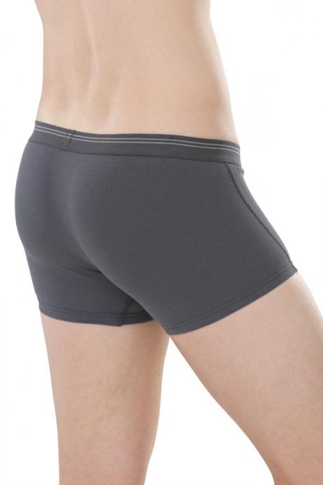Comazo Biowäsche,Short-Pants für Herren in anthrazit - Rückansicht