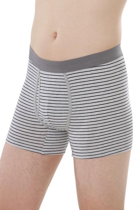 Comazo Biowäsche, Trunks für Männer in grau/navy - Vorderansicht