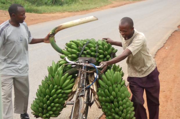 Hilfsprojekt für Uganda - Weitere Berichte von Klemens