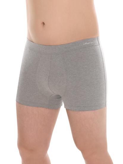 Comazo Biowäsche Herren Pants in grau-melange